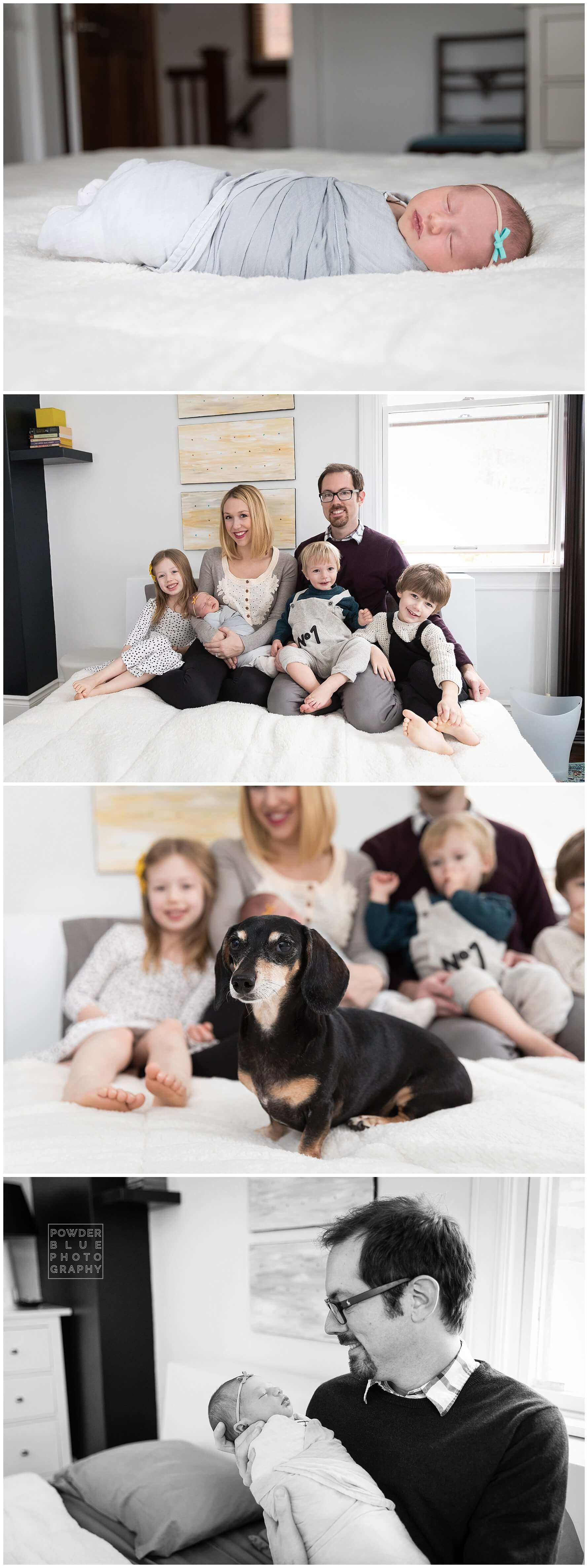 pittsburgh newborn photographer. family posed on a bed with a dachsund.